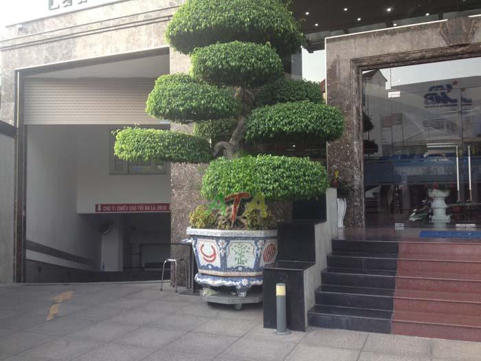 văn phòng cho thuê quận Phú Nhuận, Hồ Chí Minh, Nam Sông Tiền Building đường Nguyễn Văn Trỗi, office for lease in Phu Nhuan District Nguyen Van Troi Street, Tan Son Nhat Air Port