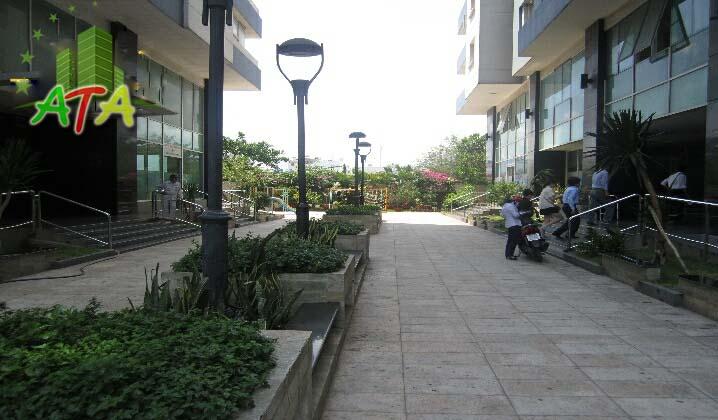 Đất Phương Nam Chu Văn An