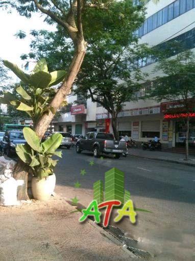 Cho thuê nhà mặt tiền đường Phó Đức Chính - P. Nguyễn Thái Bình- Quận 1.